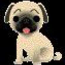 pour ceux qui aiment les animaux - Dessin - Dessins et images des membres de Jedessine - Images