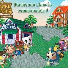 Jeu : Animal Crossing Wild World