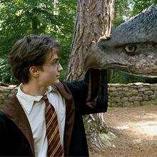Liste de créatures fantastiques dans Harry Potter