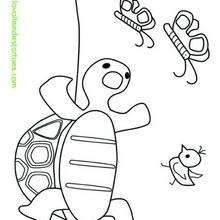 Coloriage de Tortue