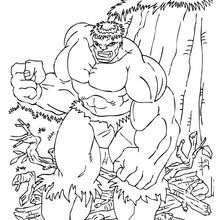 Coloriage de Hulk en colere - Coloriage - Coloriage SUPER HEROS - Coloriage de HULK - Coloriage HULK GRATUIT