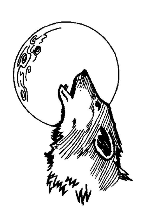 Coloriages coloriage du hurlement du loup - Tete de loup dessin ...
