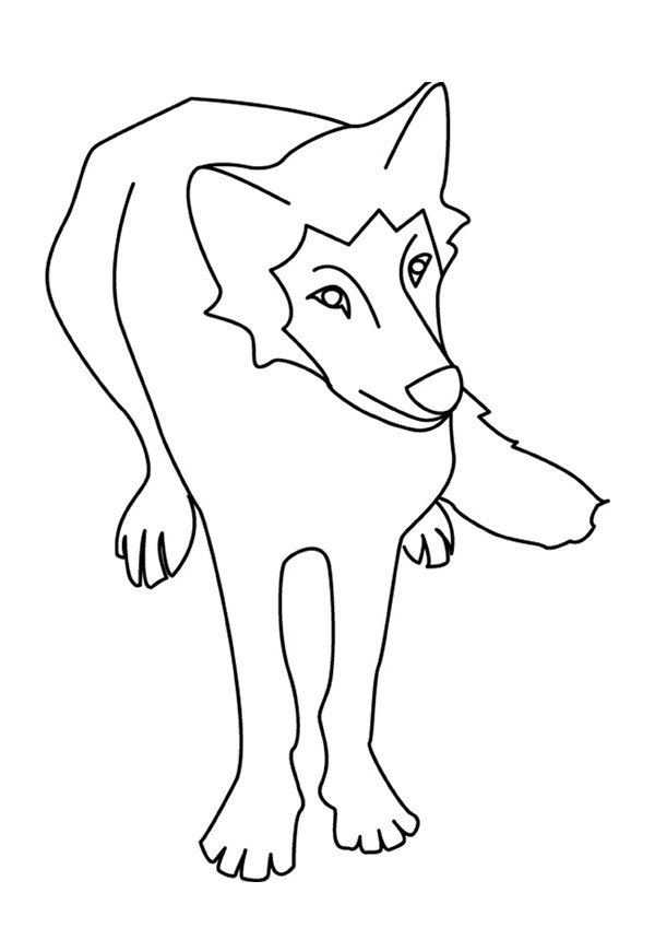 Coloriages coloriage d 39 un loup de face - Coloriage de loups ...
