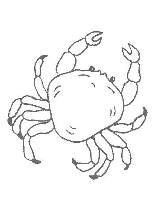 Coloriages un crabe - fr.hellokids.com