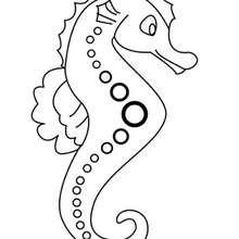 Coloriage : Un hippocampe