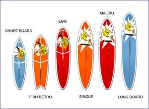 differents types de planches de surf
