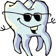 Actualité : A la découverte...de tes dents !