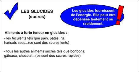 glucides2