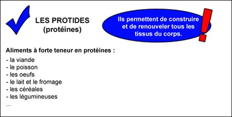 protides2