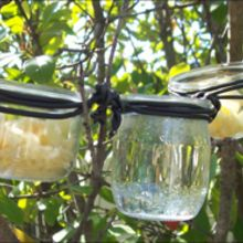 Une mangeoire pour les oiseaux - Activités - BRICOLAGE DECO