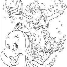 Coloriage Disney : Ariel Polochon et le Sébastien