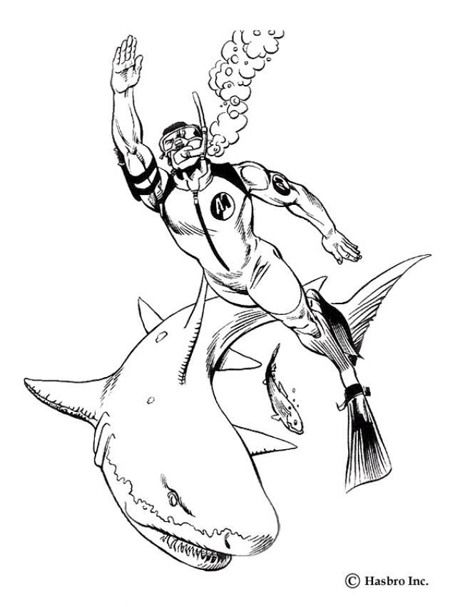 Coloriages coloriage des requins - fr.hellokids.com