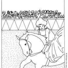 Cavalière