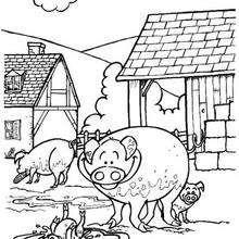 Coloriage de cochons - Coloriage - Coloriage ANIMAUX - Coloriage ANIMAUX DE LA FERME - Coloriage COCHON