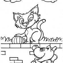 Coloriage : Chat & chien