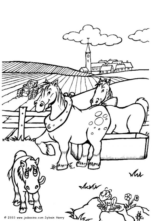Coloriages chevaux de ferme - Coloriage cheveaux ...