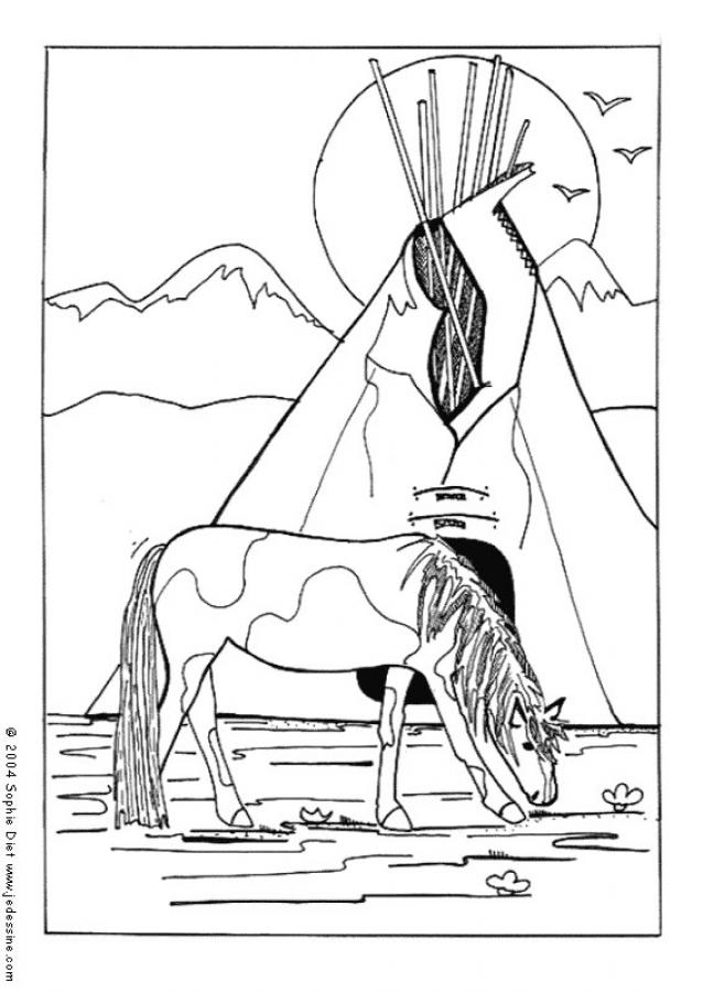 Coloriage : Cheval indien