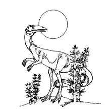 Coloriage : Dinosaure à tête d'oiseau