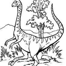 Coloriages De Dinosaures
