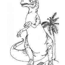 Coloriage Dinosaure Carnivore.Coloriages Dinosaure Carnivore Fr Hellokids Com