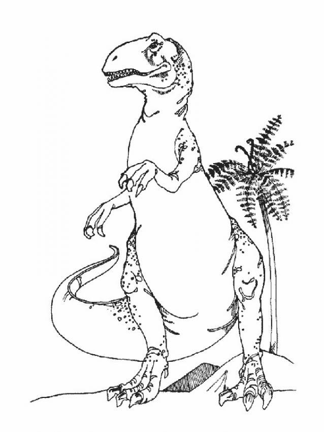 Coloriage : Dinosaure carnivore