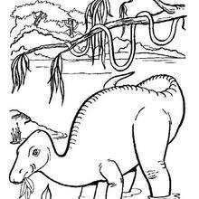 Coloriage : Dinosaure qui mange des feuilles