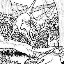 Coloriage : Dinosaures dans les arbres