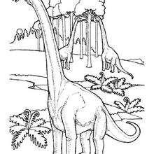 Coloriage : Le repas des brachiosaures