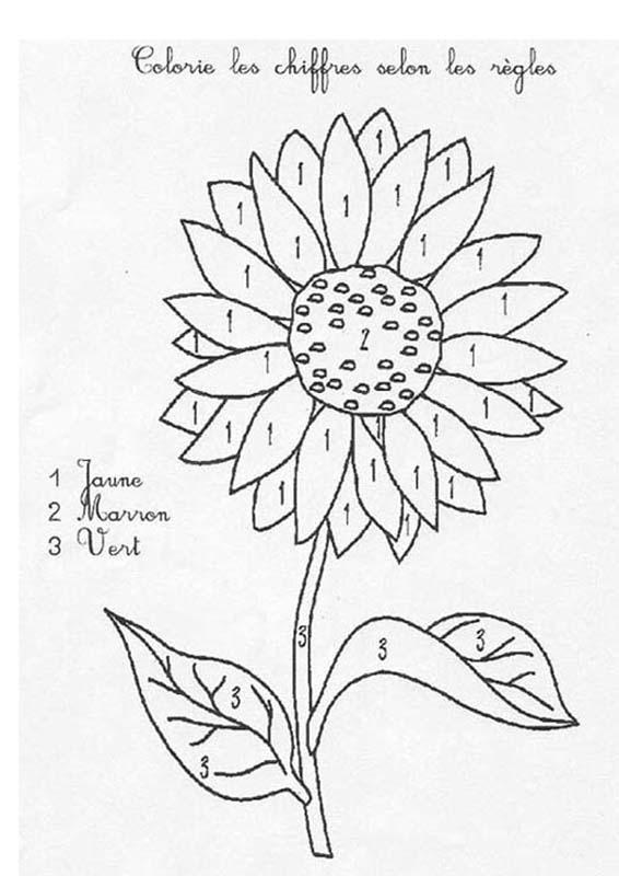 Coloriage Magique Fleur Maternelle.Coloriages A 3 Couleurs Fr Hellokids Com