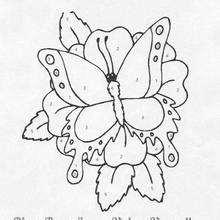 Coloriage magique : Papillon