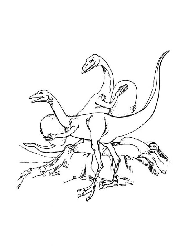 oviraptor coloring page - coloriages oviraptor