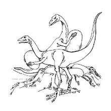 Coloriage : Oviraptor