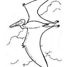 Coloriage : Pterodactyle