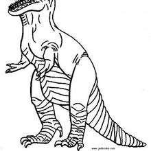 Coloriage : Tyranosaure