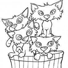 Coloriage : Un panier de chats
