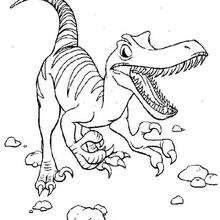 Coloriage : Vélociraptor féroce