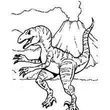 Coloriage : Velociraptor