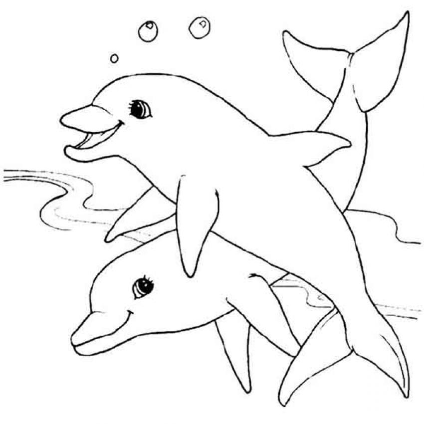 Coloriages coloriage d 39 un couple de dauphins - Dauphin dessin ...