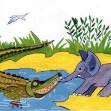 Crocodile et éléphant - Dessin - Dessin ANIMAUX - Dessin ANIMAUX DE LA JUNGLE - Dessin ELEPHANT
