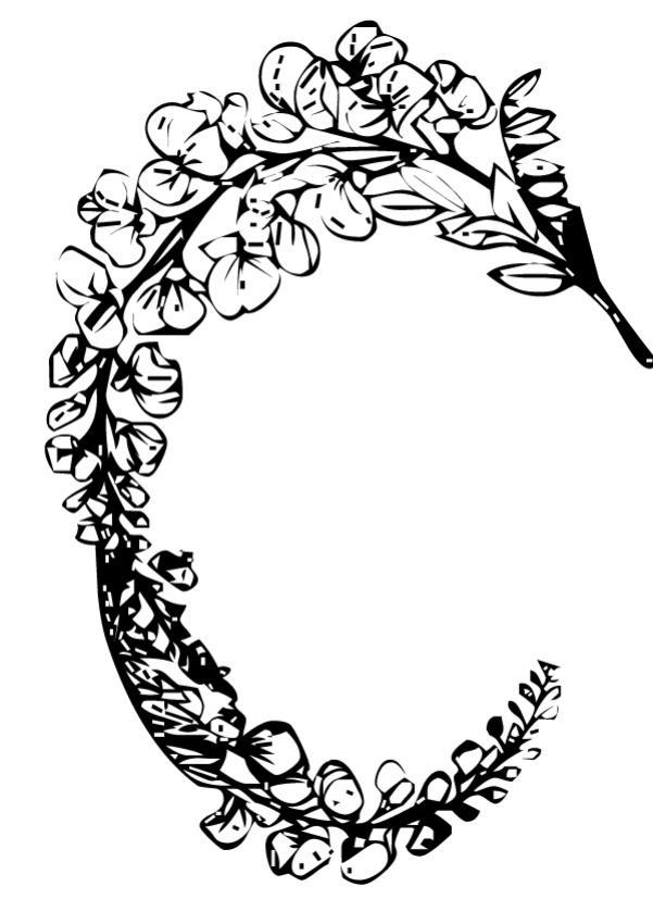 Coloriages coloriage d 39 un arc de fleurs - Coloriage fleur gentiane ...