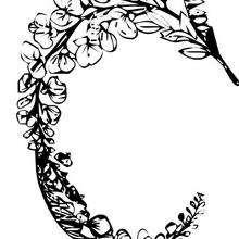 Patrons a imprimer gabarit de fleur - Dessin de rosier ...