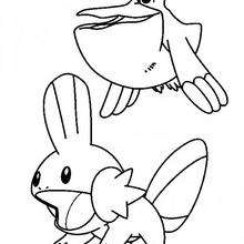 Gobou - Coloriage - Coloriage POKEMON