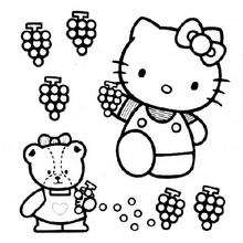 Coloriage de Hello Kitty qui cueille du raisin - Coloriage - Coloriage HELLO KITTY