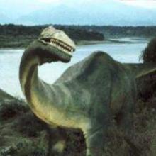 L'Ampelosaurus