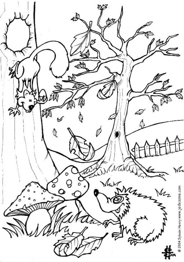 Coloriage : Un écureuil et un hérisson