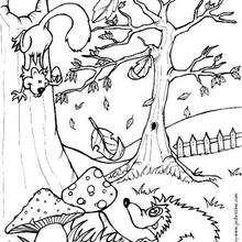 Coloriage d'un écureuil et d'un hérisson - Coloriage - Coloriage NATURE - Coloriage LES 4 SAISONS