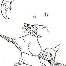 Coloriage d'une sorcière et son chat