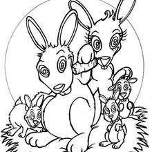 Coloriage de lapins - Coloriage - Coloriage ANIMAUX - Coloriage ANIMAUX DOMESTIQUES - Coloriage LAPIN