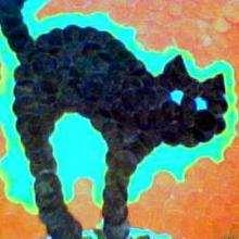 Dessin d'enfant : Le chat de catkara