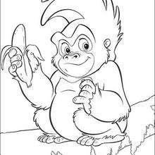 Coloriage du petit singe et la banane - Coloriage - Coloriage DISNEY - Coloriage LIVRE DE LA JUNGLE